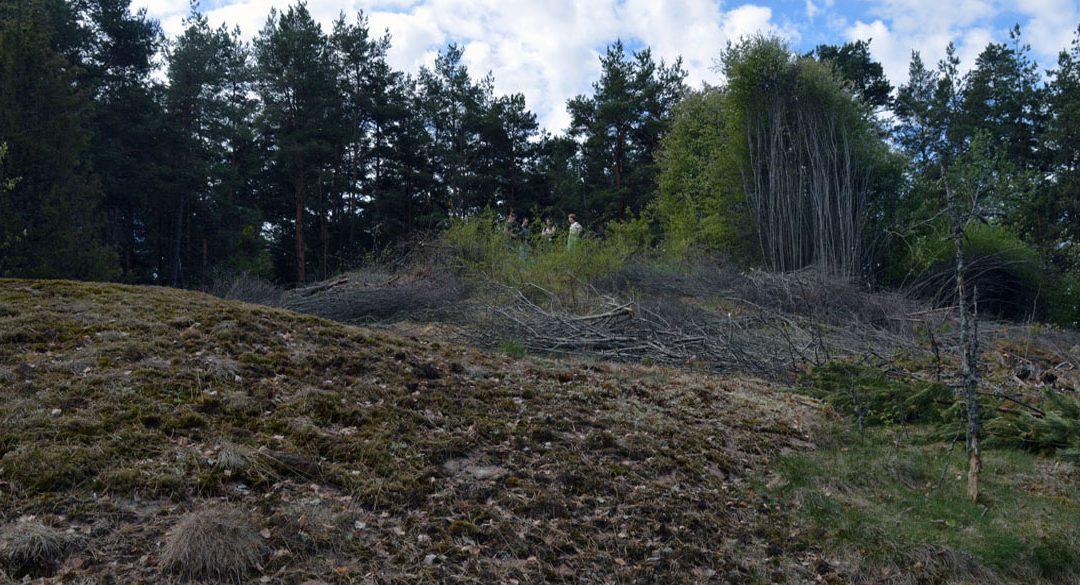 Gullhögen – Gulldens hög i Husby-Långhundra